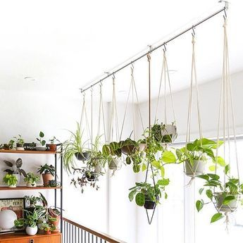 43 Charming Hanging Plant Ideas  With winter just around the corner for many people it is time to seriously start thinking about bringing the outdoor garden into your hom...