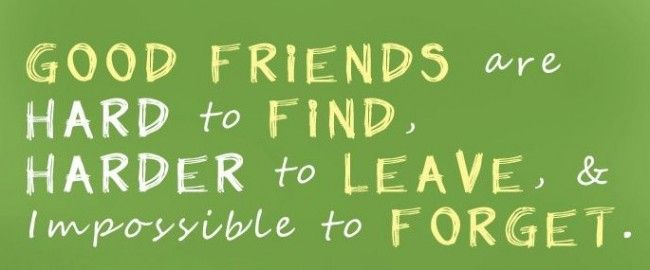 Friends Like You Are Hard To Find Harder To Leave Impossible To