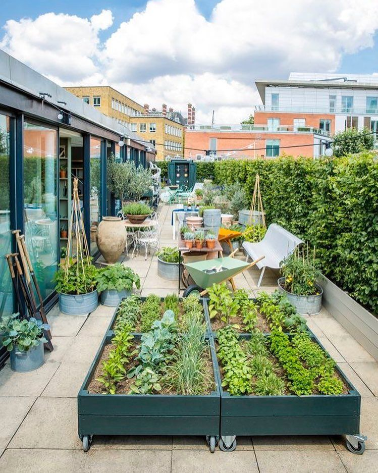 40 Lush Yet Well Trimmed Terrace Garden Ideas for a Picturesque Roof ...
