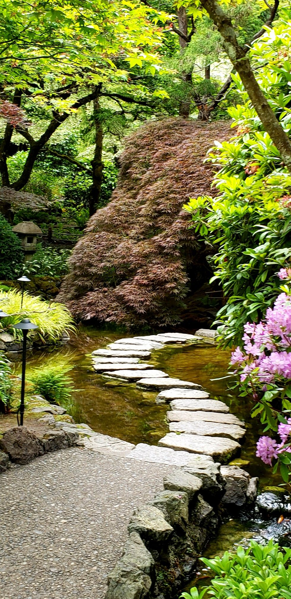 Butchart Gardens, Japanese garden, Vancouver Island, BC #butchartgardens