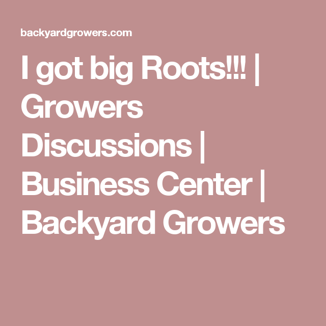 I Got Big Roots Growers Discussions Business Center