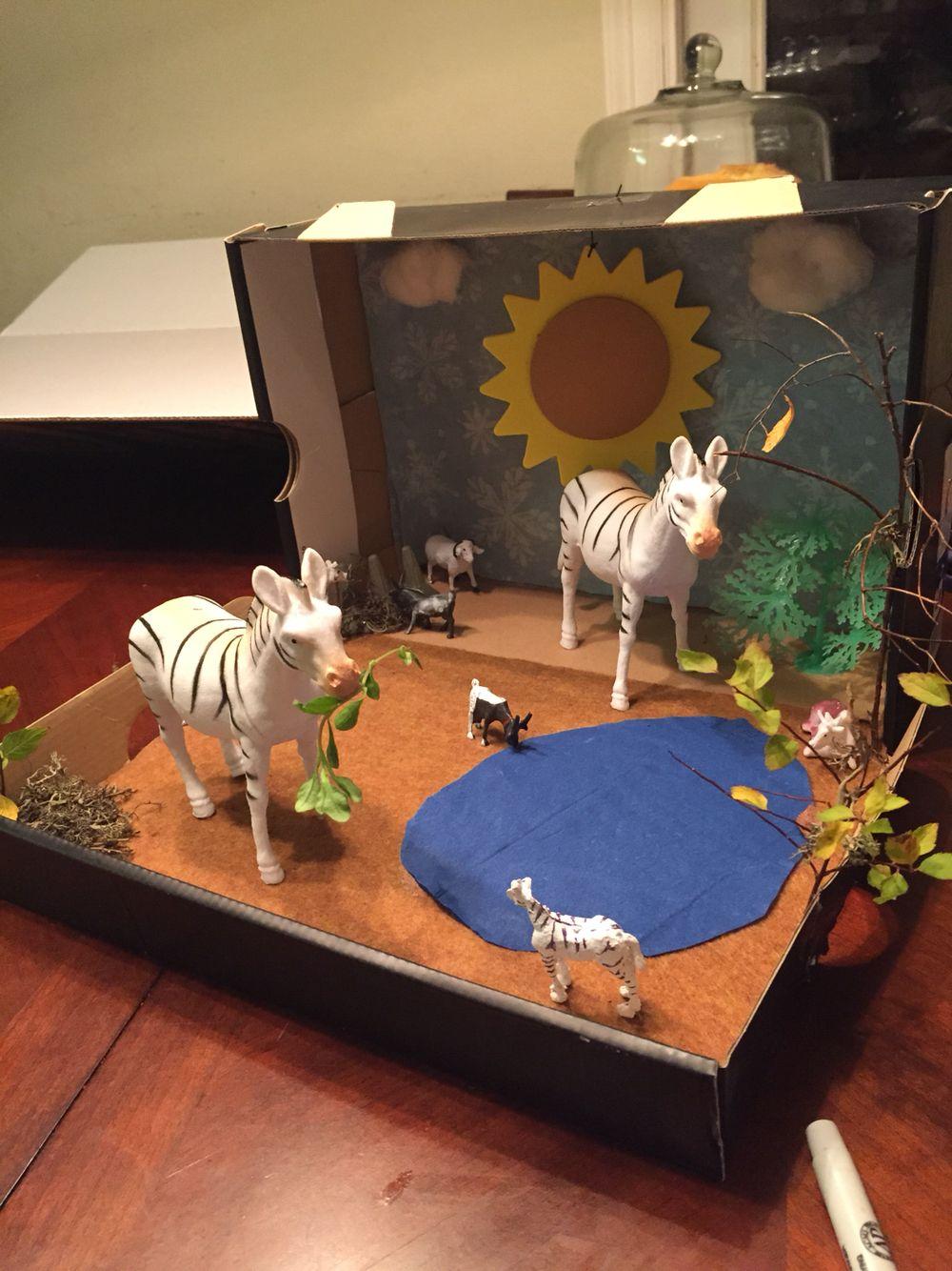 Classroom Ideas For 5th Grade ~ Shoebox zebra diorama pinterest