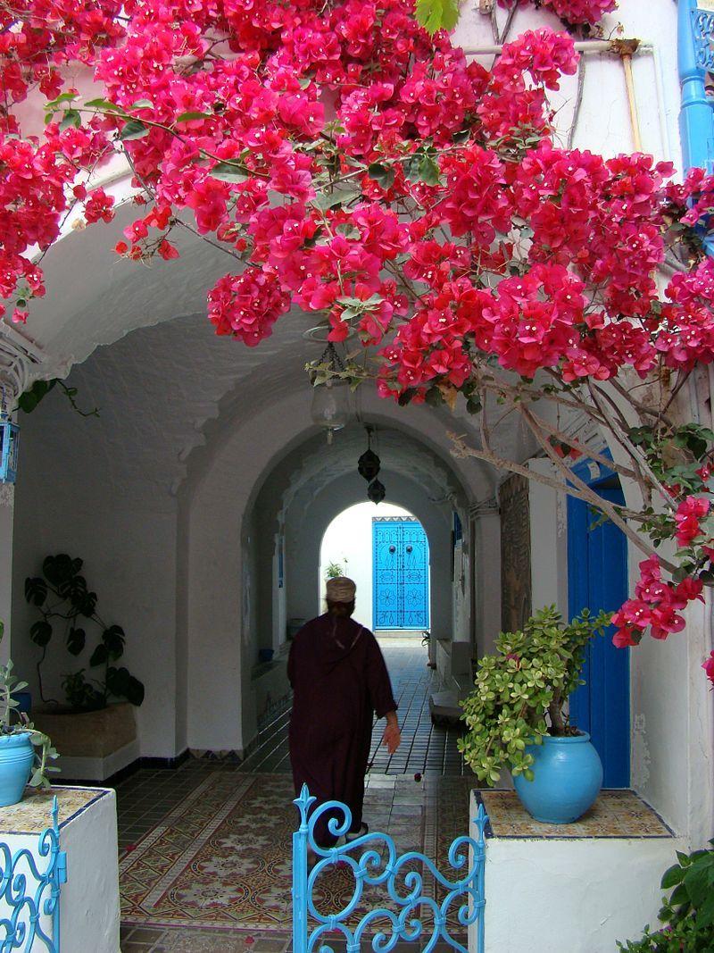 Sidi Bou Said Paysage Tunisien Tunisie Paysage Sidi Bou Said