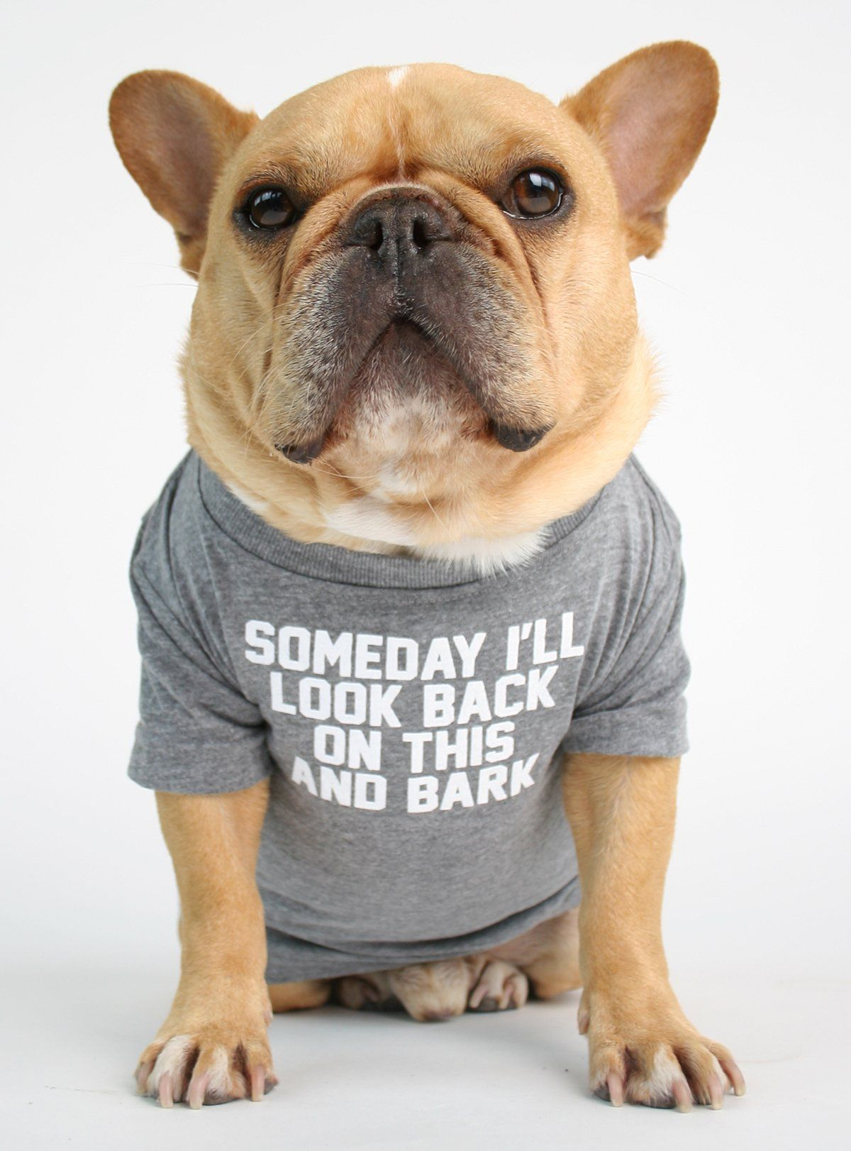 Someday I Ll Bark Dog Tee Dogs Puppies French Bulldog Puppies