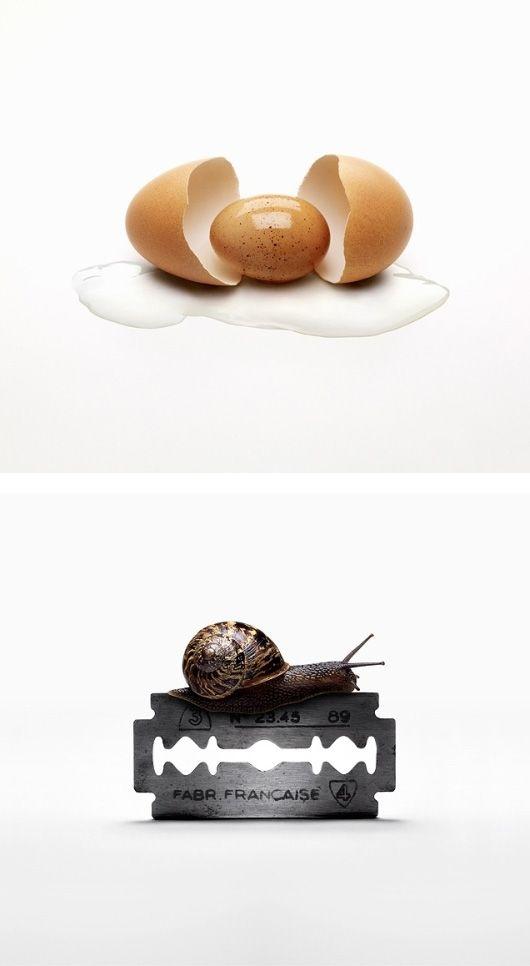 ~ o novo não me choca mais. nada de novo sob o Sol. o novo é o mesmo ovo chocando o mesmo ovo de sempre ~ Itamar Assumpção