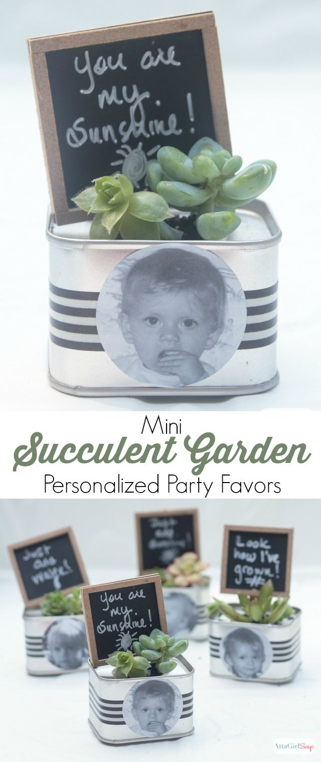 Mini Succulent Garden Personalized Birthday Party Favors ...