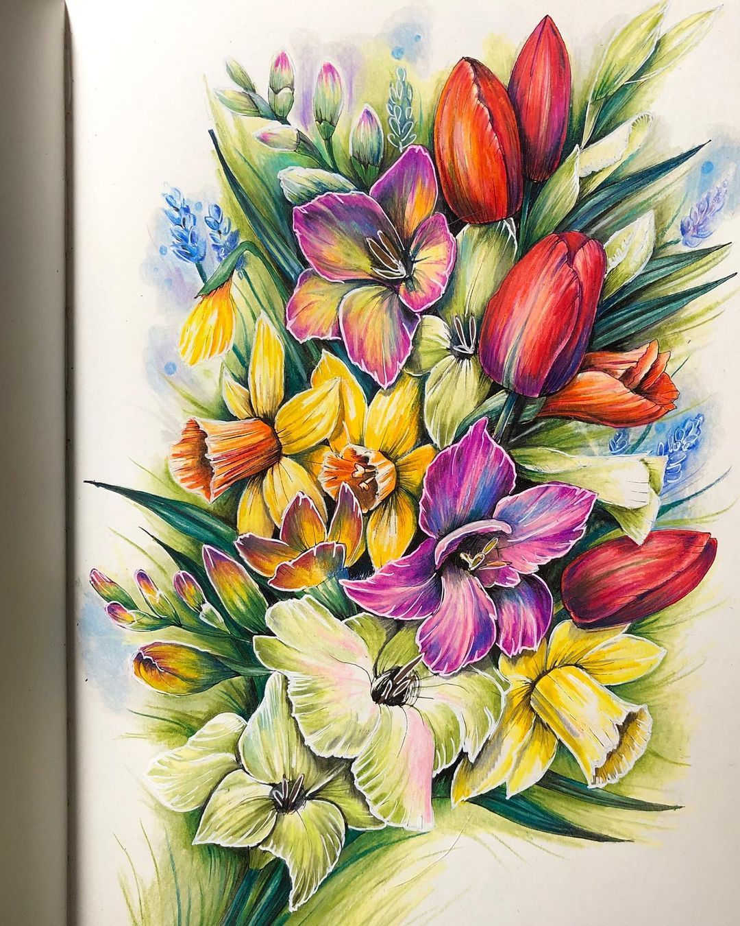 Gefallt 102 Mal 3 Kommentare Petra Gescheidtova Colourful Peeta Auf Instagram Testing My New Posca Pencils Sedmikvit Instagram Petra Gefallt