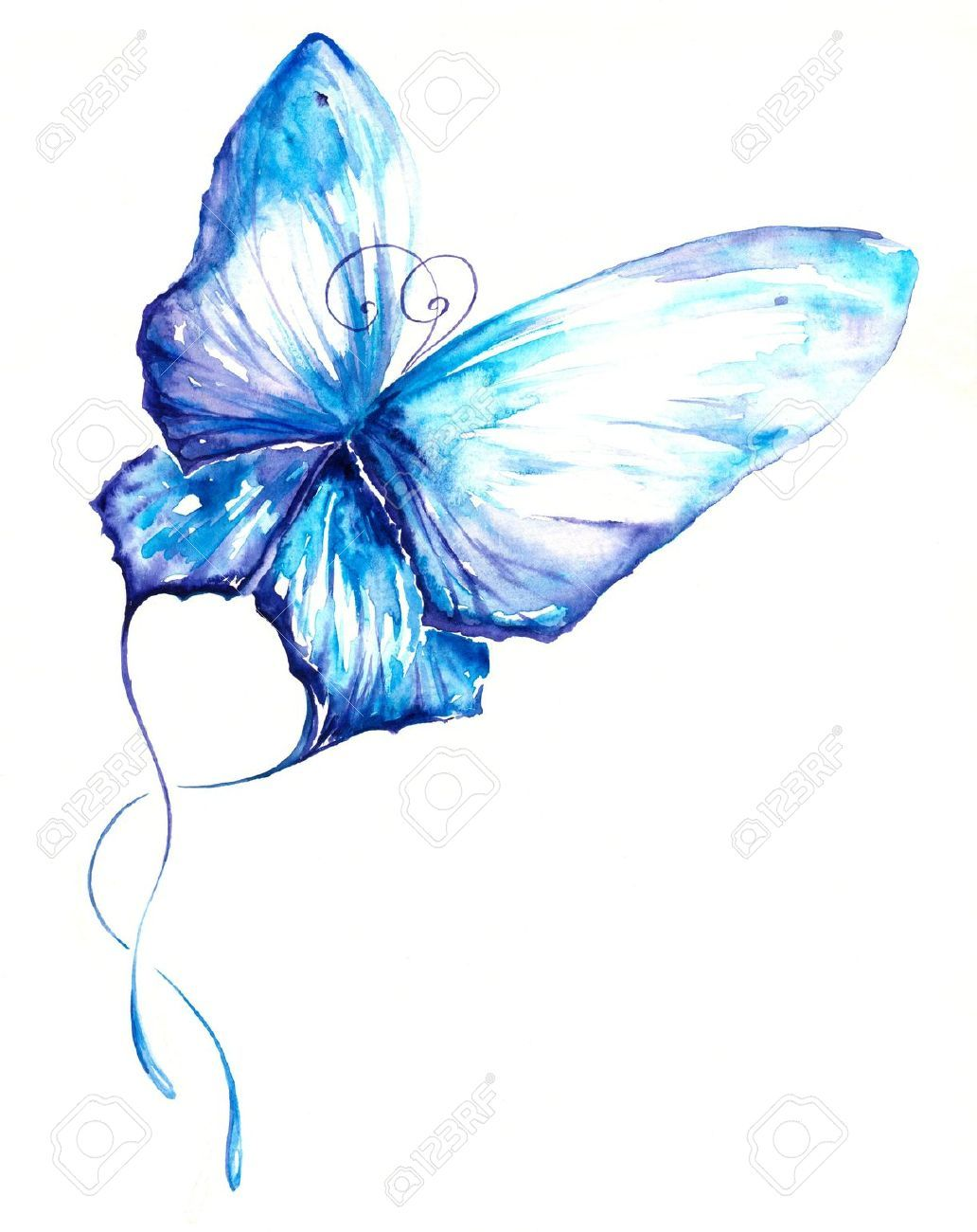 Stock Photo Butterfly Watercolor Butterfly Painting Watercolor
