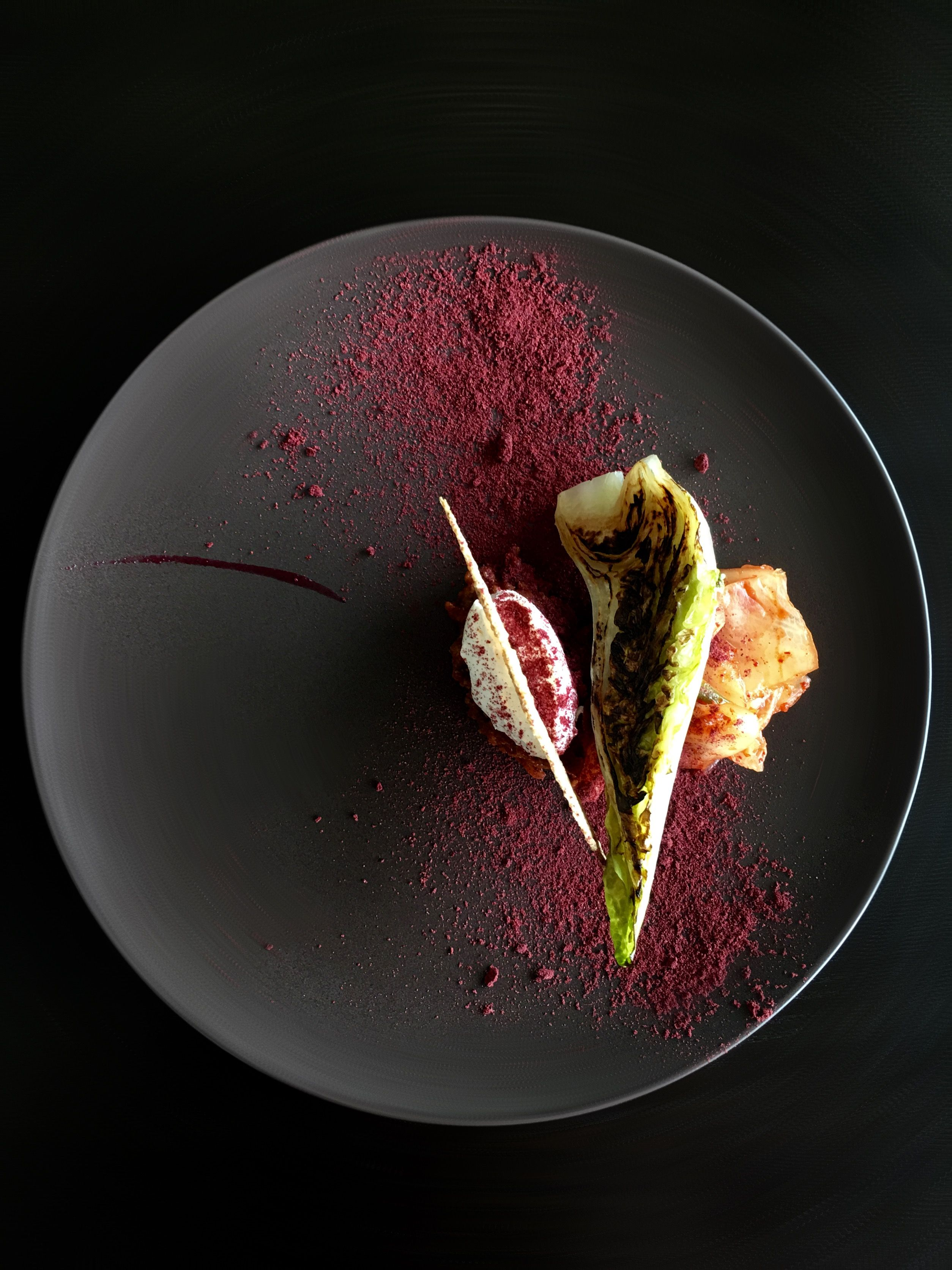 Lamb Ragout, Labneh, Apple Kimchi, Burnt Lettuce, Red Fruits and Beetroot Powder