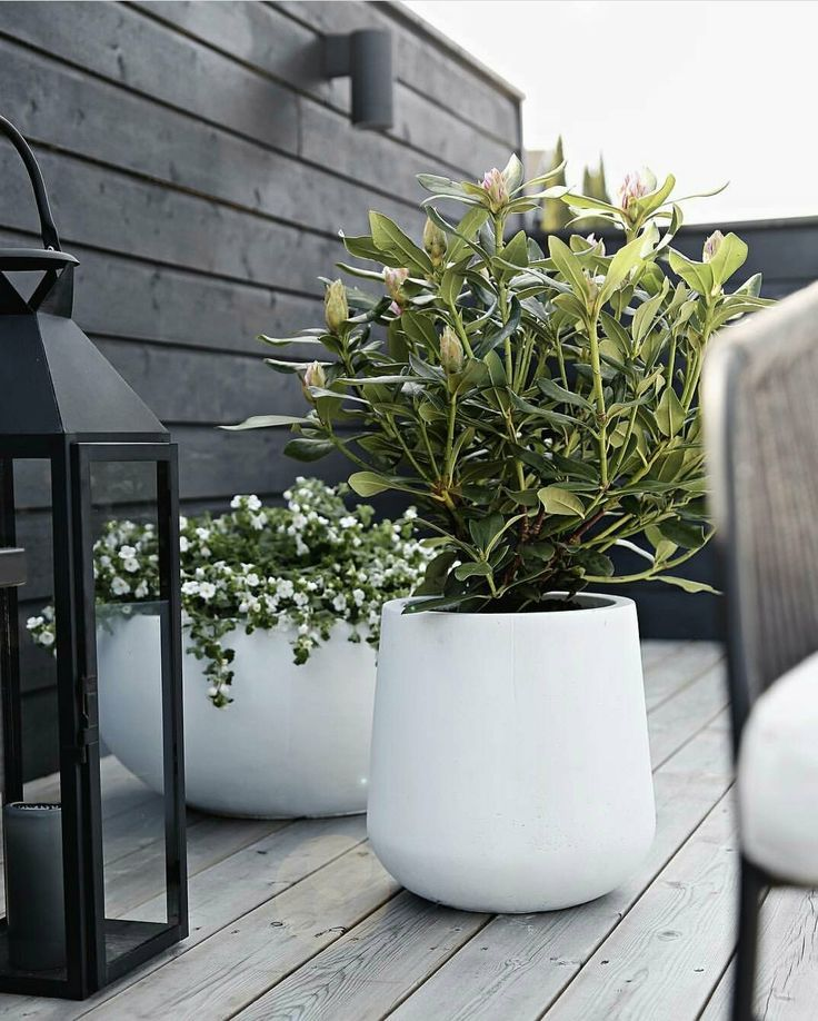 Indoor Planter Box Ideas: 64+Indoor Plant Ideas To Beauty Your Small Home