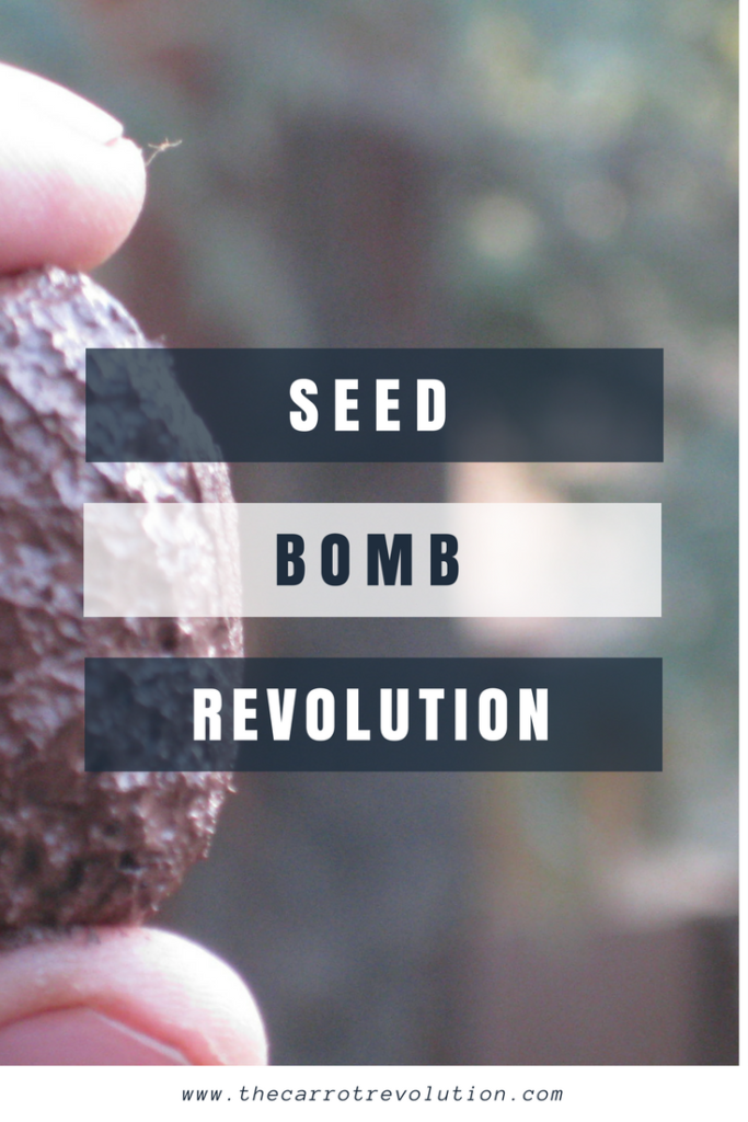 Seed bombs are used by guerrilla gardeners to spread seeds in hard to reach places. Make your own seed bombs at home and beautify your neighborhood.