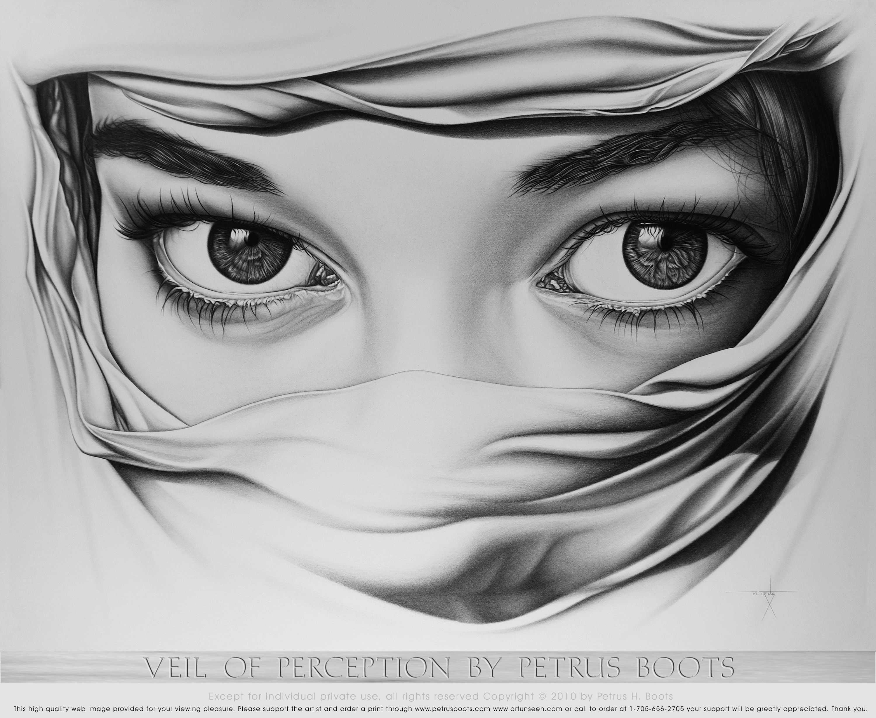 Veil Of Perception By Petrus Boots Original Pencil Drawing Art Pencil Drawings Pencil Art Drawings Art Sketches