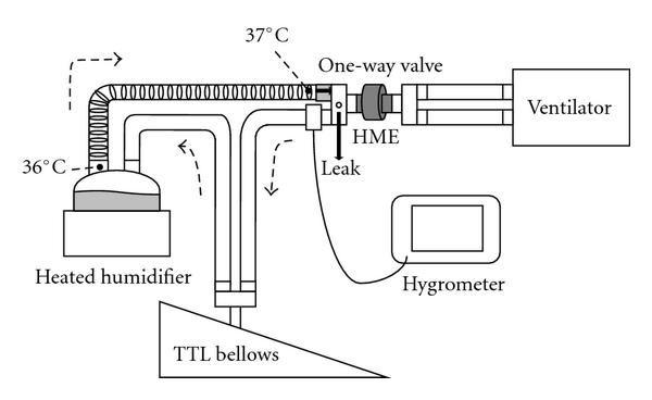 Humidification Performance Of Heat And Moisture Exchangers For Pediatric Use Figure 1 Pediatrics Heat Moisturizer