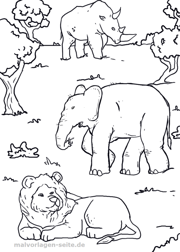 ausmalbilder zootiere zum ausdrucken  best trend design