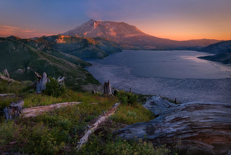 All Regenerates - Here is one of my personal favorite images that I have taken from Mt. St. Helens. I loved the wide view of spirit lake and the multitude of logs that resemble a glacier from a distant view. I hope this also resonates with you.