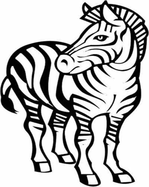 Zebra Awesome Drawing Coloring Page