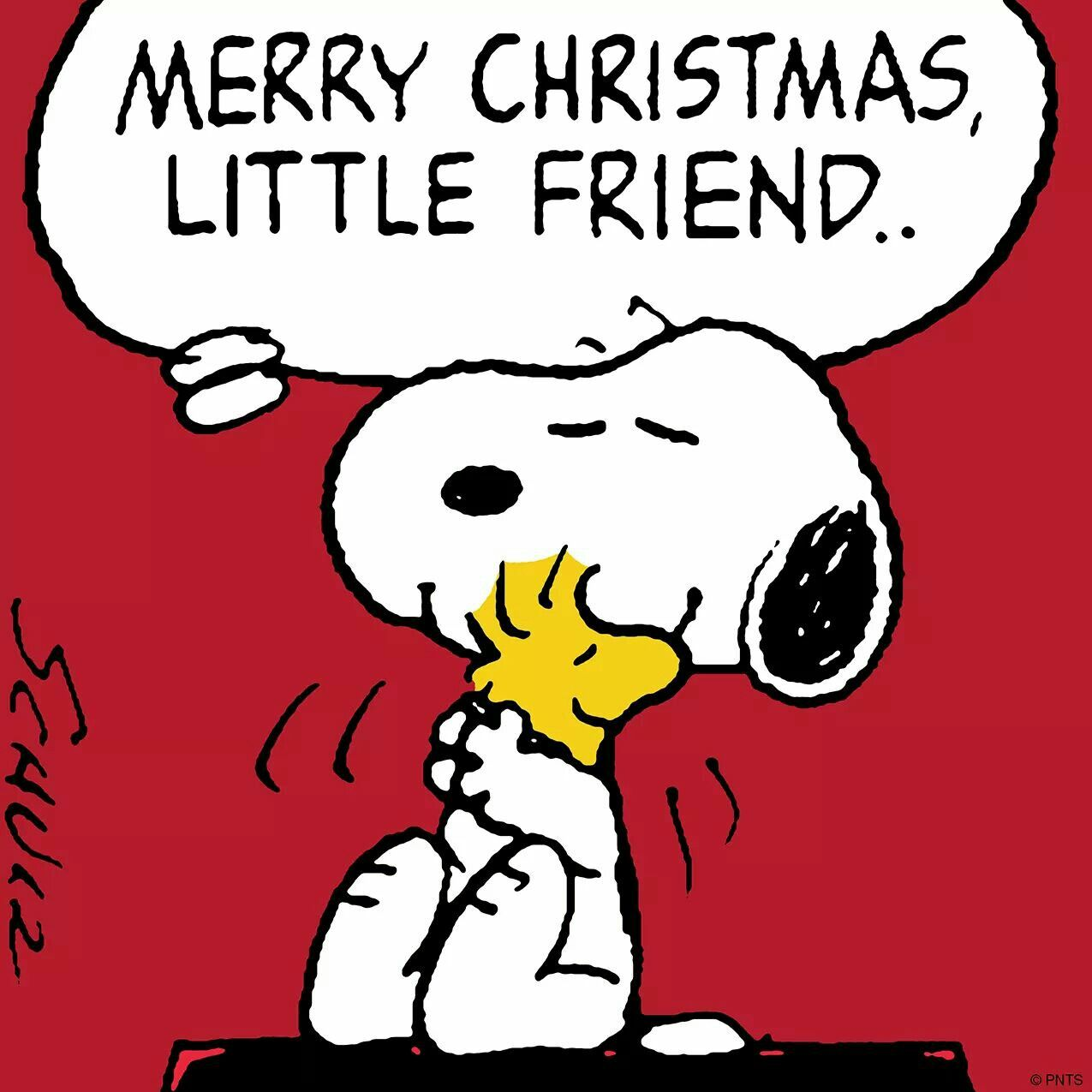Merry Christmas to all! | SNOOPY | Pinterest