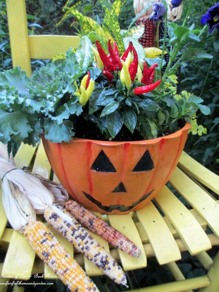 Jack O'Lantern Planter with Ornamental Kale and Peppers ~ Our Fairfield Home and Garden Welcomes Fall  http://ourfairfieldhomeandgarden.com/our-fairfield-home-garden-welcomes-fall/