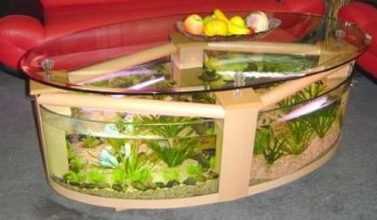 Oval aquarium coffee table.  Comes ready for fish and water! So relaxing...