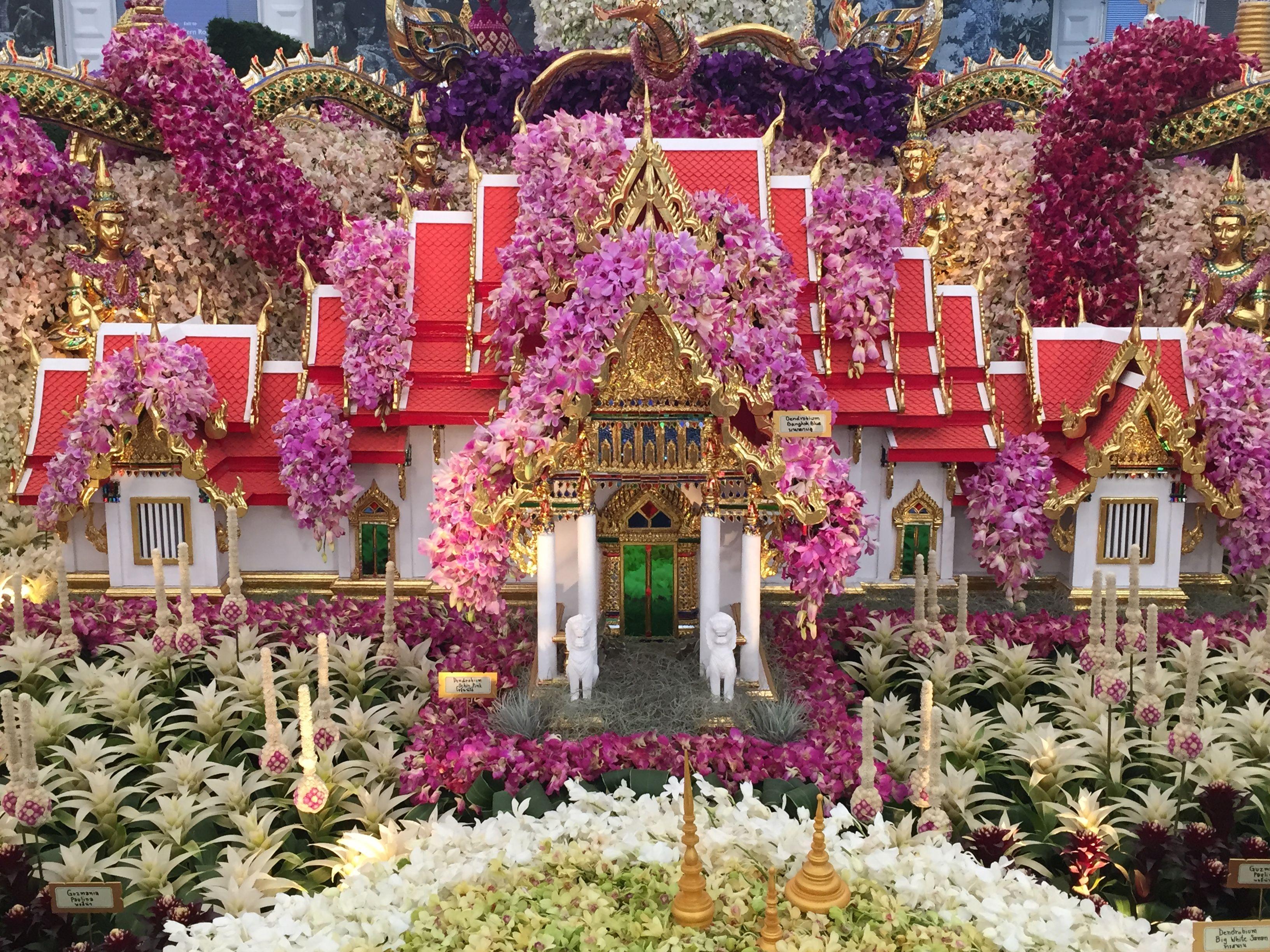 ปักพินโดย Lucy McCrudden ใน Chelsea Flower Show 2015