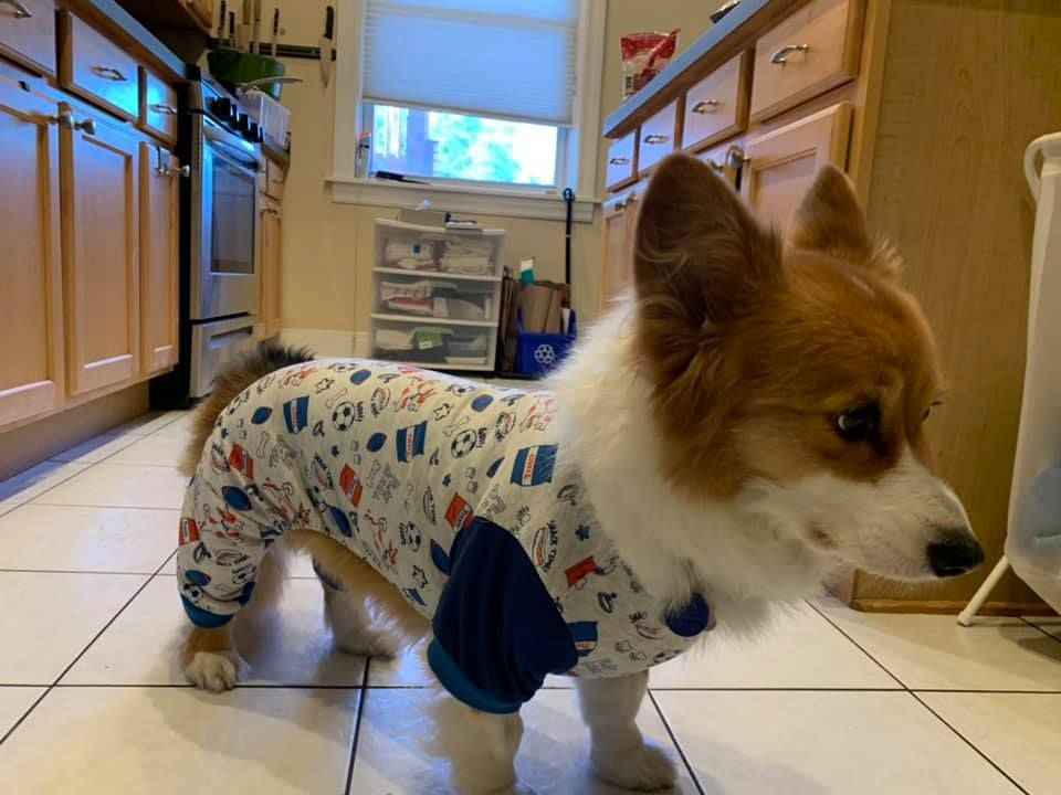 Archer's pajamas for protecting his stitches were