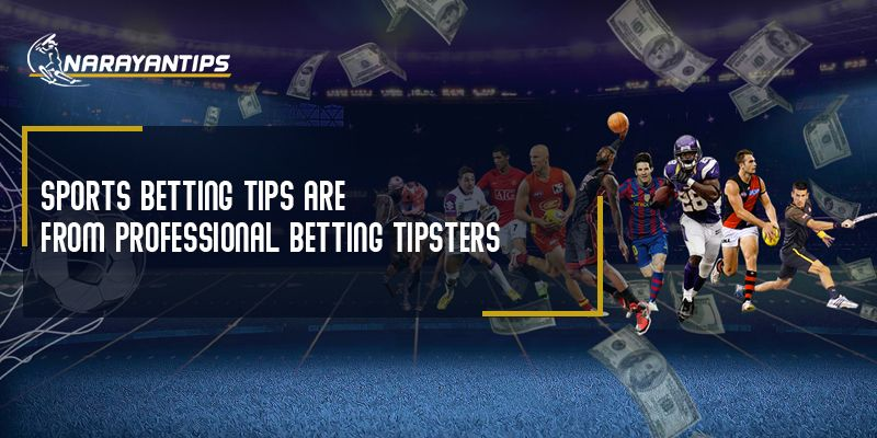 Sport betting tips from professionals favorite 77 betting sport