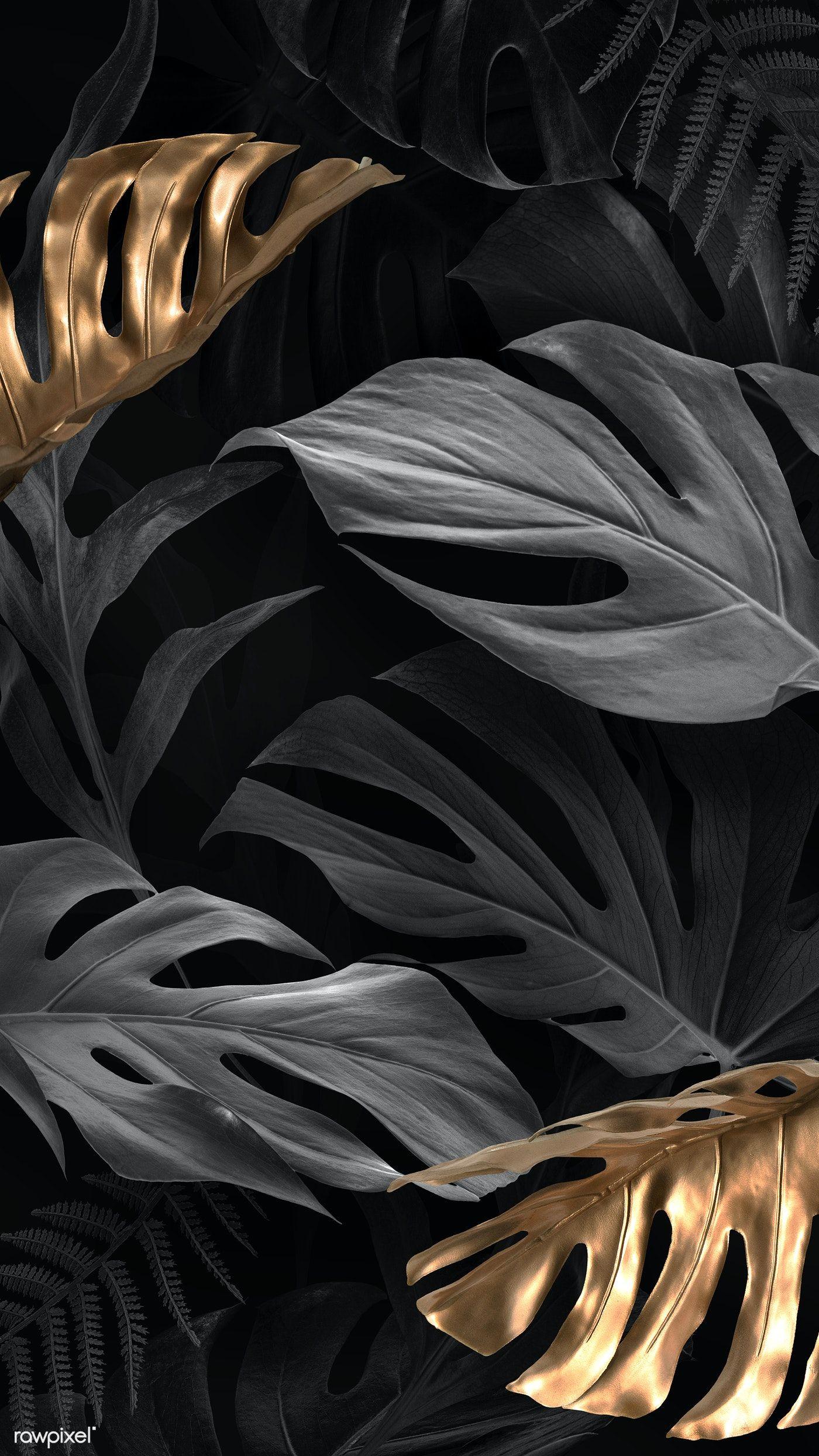 Download premium illustration of Gold and black Monstera Deliciosa leaves
