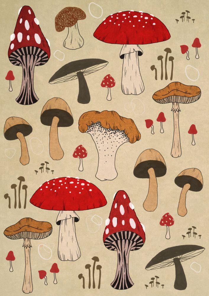 Mushrooms No.1 iPhone Skin by lynettesherrard