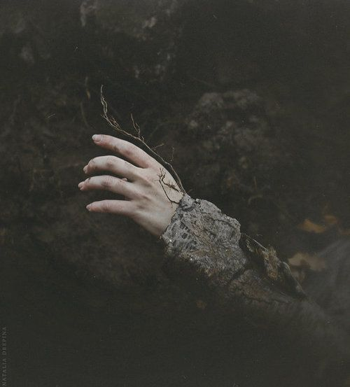 Buried Autumn By Natalia Drepina Dark Art Photography Photography Southern Gothic