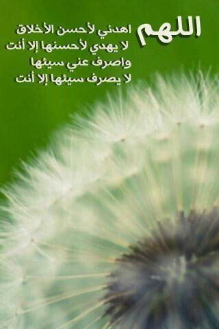 اللهم اهدني ﻷحسن الأخلاق Holy Quran My Pictures Islam