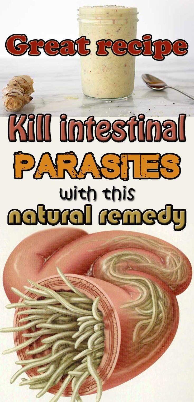 How To Remove Intestinal Parasites Naturally