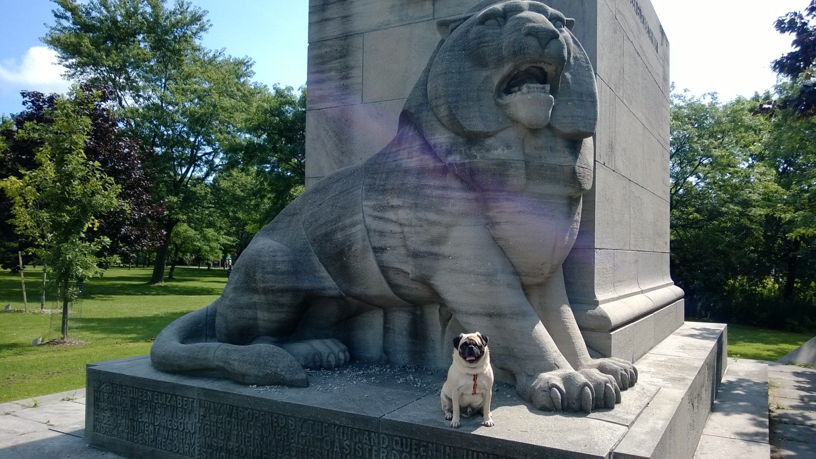 Roaar Milo Poses With The Queen Elizabeth Way Monument Lion