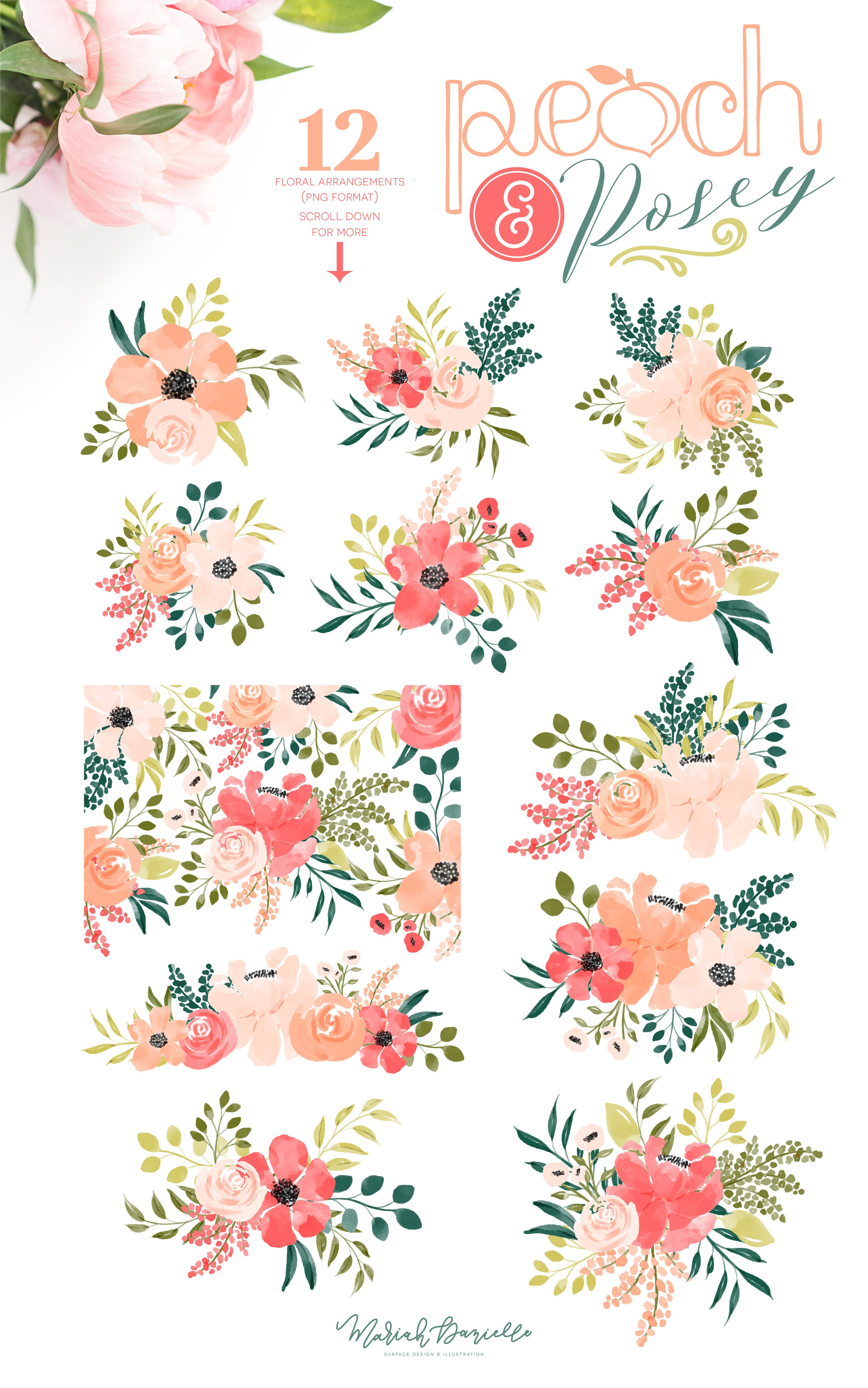 Peach Posey Floral Graphic Set Illustrations Hand Drawn