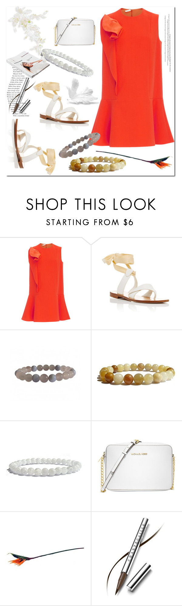 """Street Style"" by ilona-828 ❤ liked on Polyvore featuring Delpozo, Sarah Flint, Michael Kors, American Apparel, Chantecaille, StreetStyle, dress, polyvoreeditorial and Zenstore"