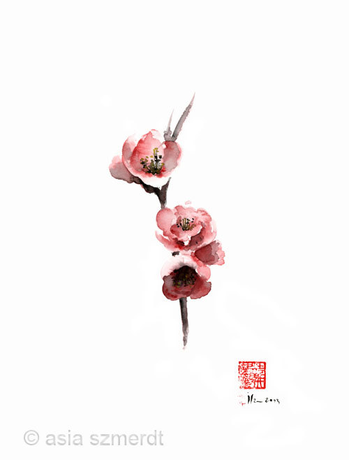 Cherry Blossom Sakura Flowers Pink Red White Brown Black Tree