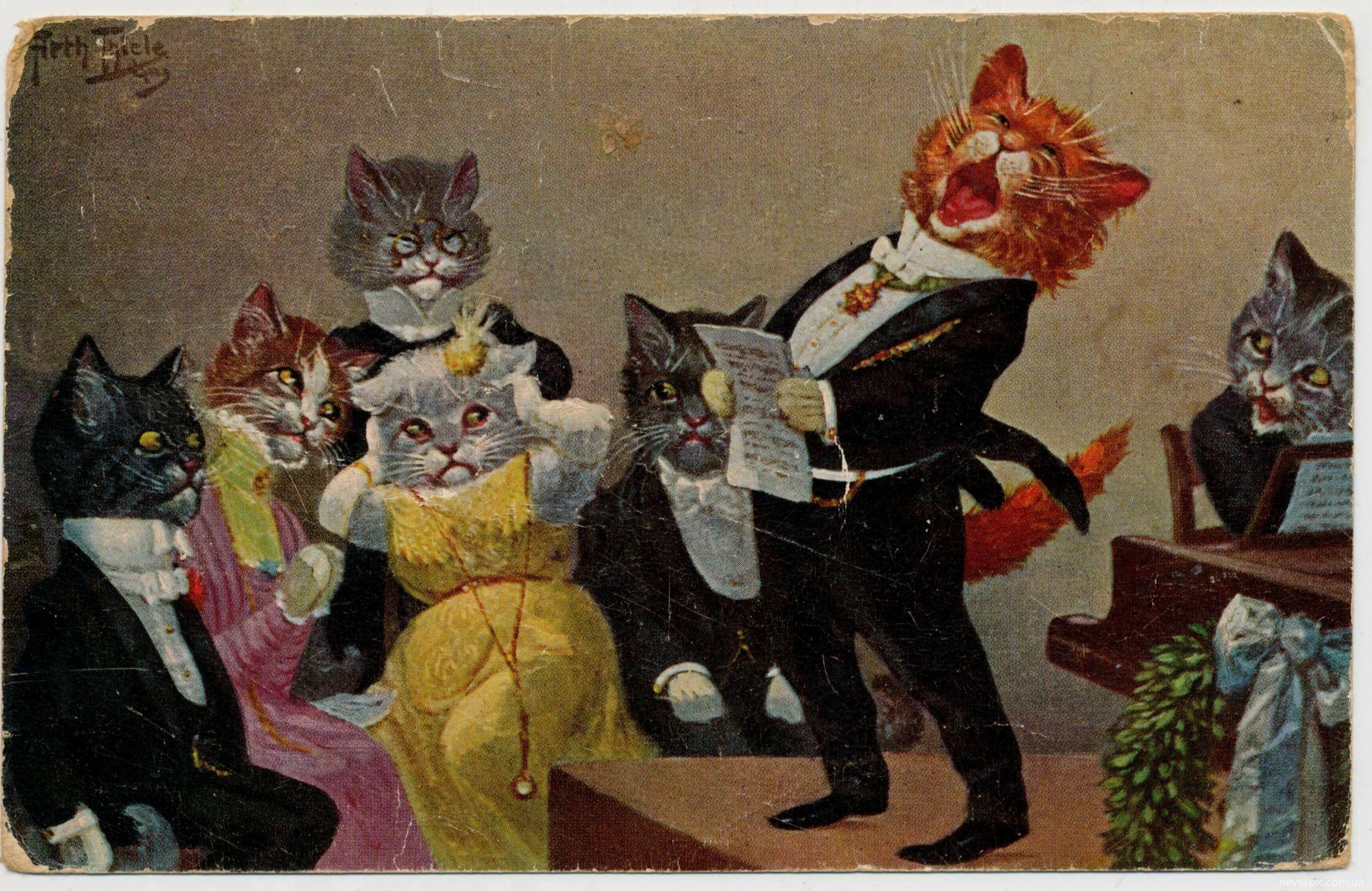 можете поющие коты открытка оригинальные дизайнерские