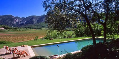 Guest House And Holiday Rental In Provence Luberon   Swimming Pool