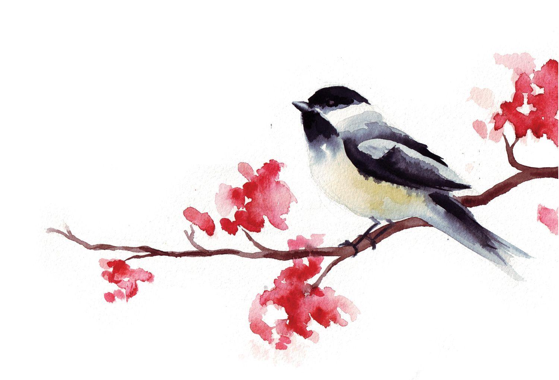 Watercolor Chickadee at pixshark.com   Chickadee art ... - photo#36
