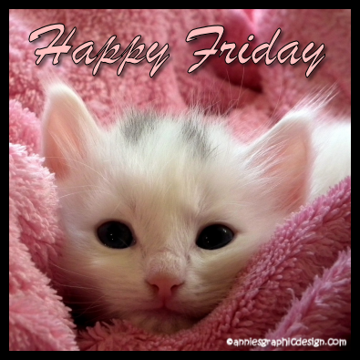 Happy Friday picture quote tags | Kittens cutest, Cat care ...