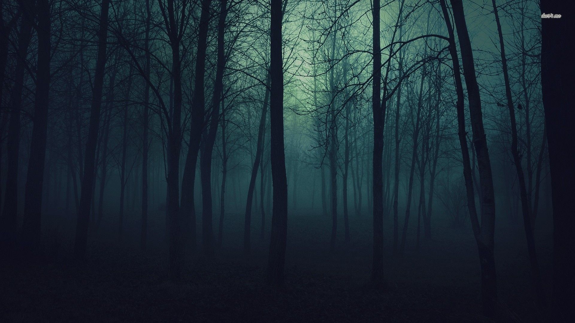 Dark forest backgrounds wallpapertags dark forest hd tablet dark forest backgrounds wallpapertags dark forest hd tablet smartphone wallpaper voltagebd Choice Image