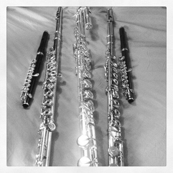 Flute Family   Instrument   Pinterest   Flutes ...