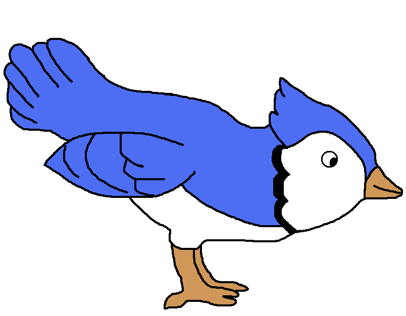 bird clipart download the png files here clip art pinterest rh pinterest com blue jay mascot clipart blue jay clipart for school shirts