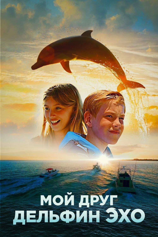 Dolphin kick2019 english hd 720p