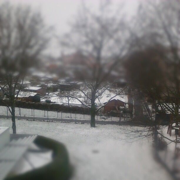 It's snowing - view out of my bedroom window in Frankfurt-Höchst (Germany)