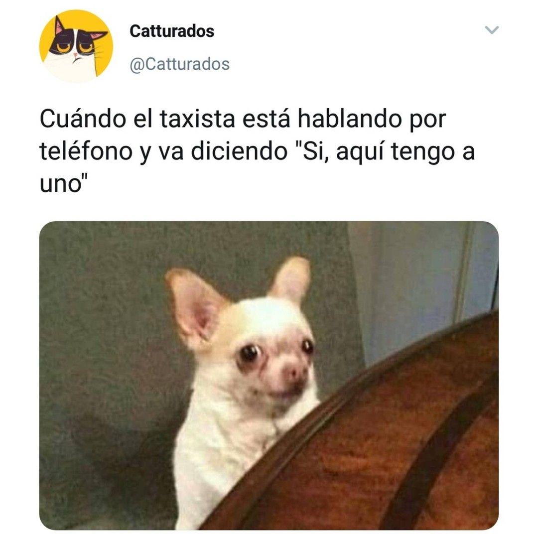 Mejor Escapa Lejos Funny Spanish Memes Memes Spanish Memes