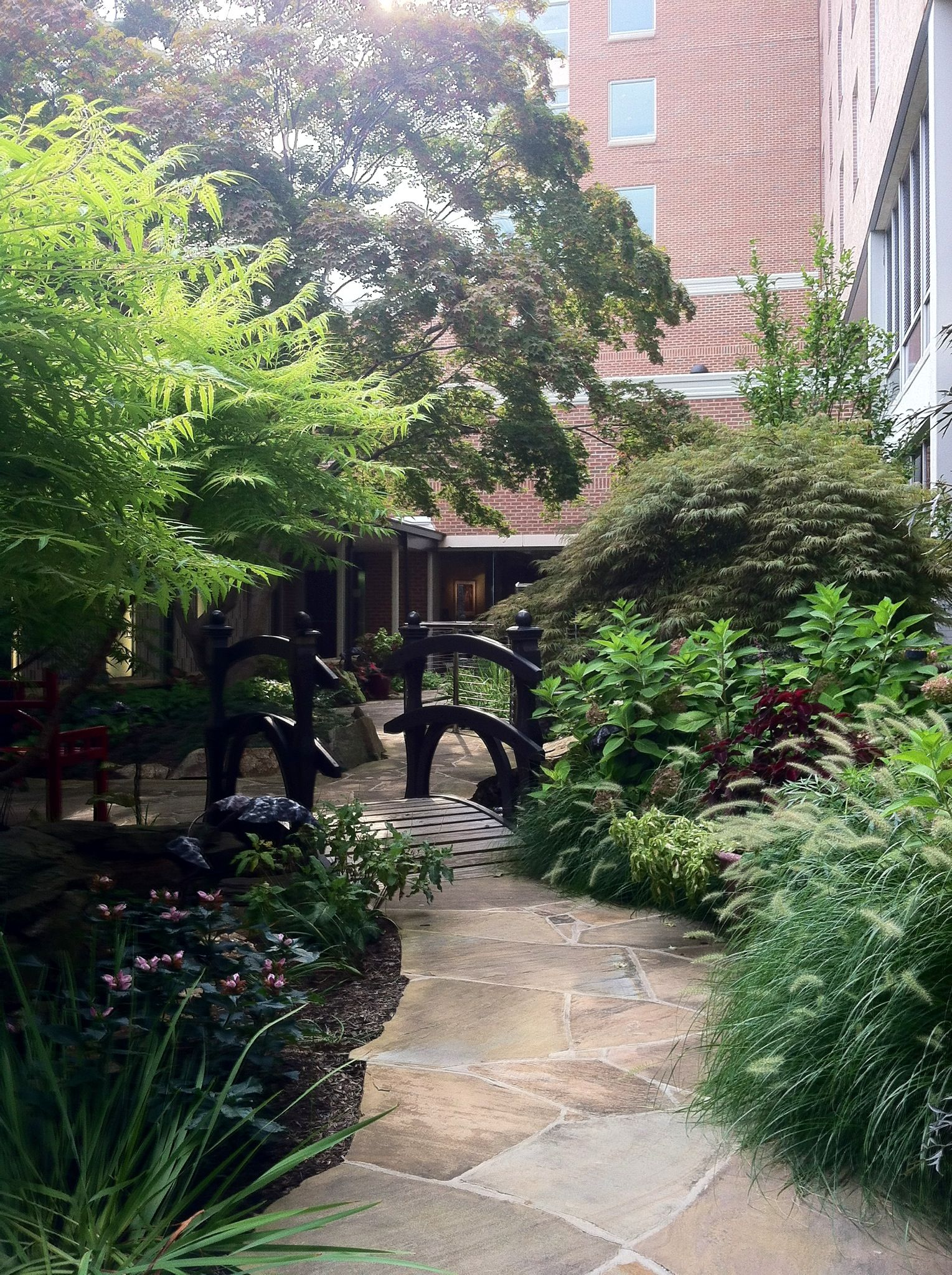 Meditation Garden at work ? | Meditation garden on Meditation Patio Ideas  id=77439