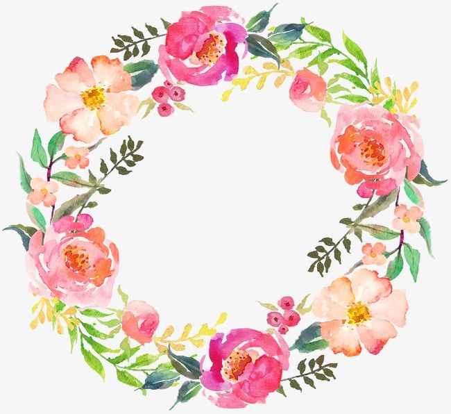 Drawing Circular Wreath 05 Watercolor Wreath Round Png And Vector With Transparent Background For Free Download Wreath Drawing Wreath Watercolor Flower Frame