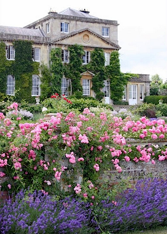 Surprising Pin By Quintessence On Gardens English Flower Garden Download Free Architecture Designs Rallybritishbridgeorg