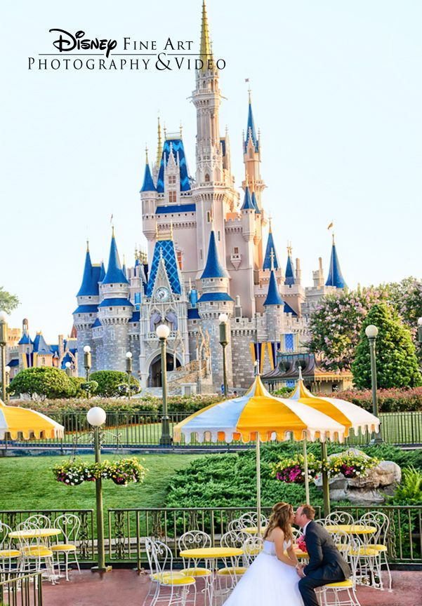 I Want My Boyfriend To Propose To Me In Front Of The Cinderellas
