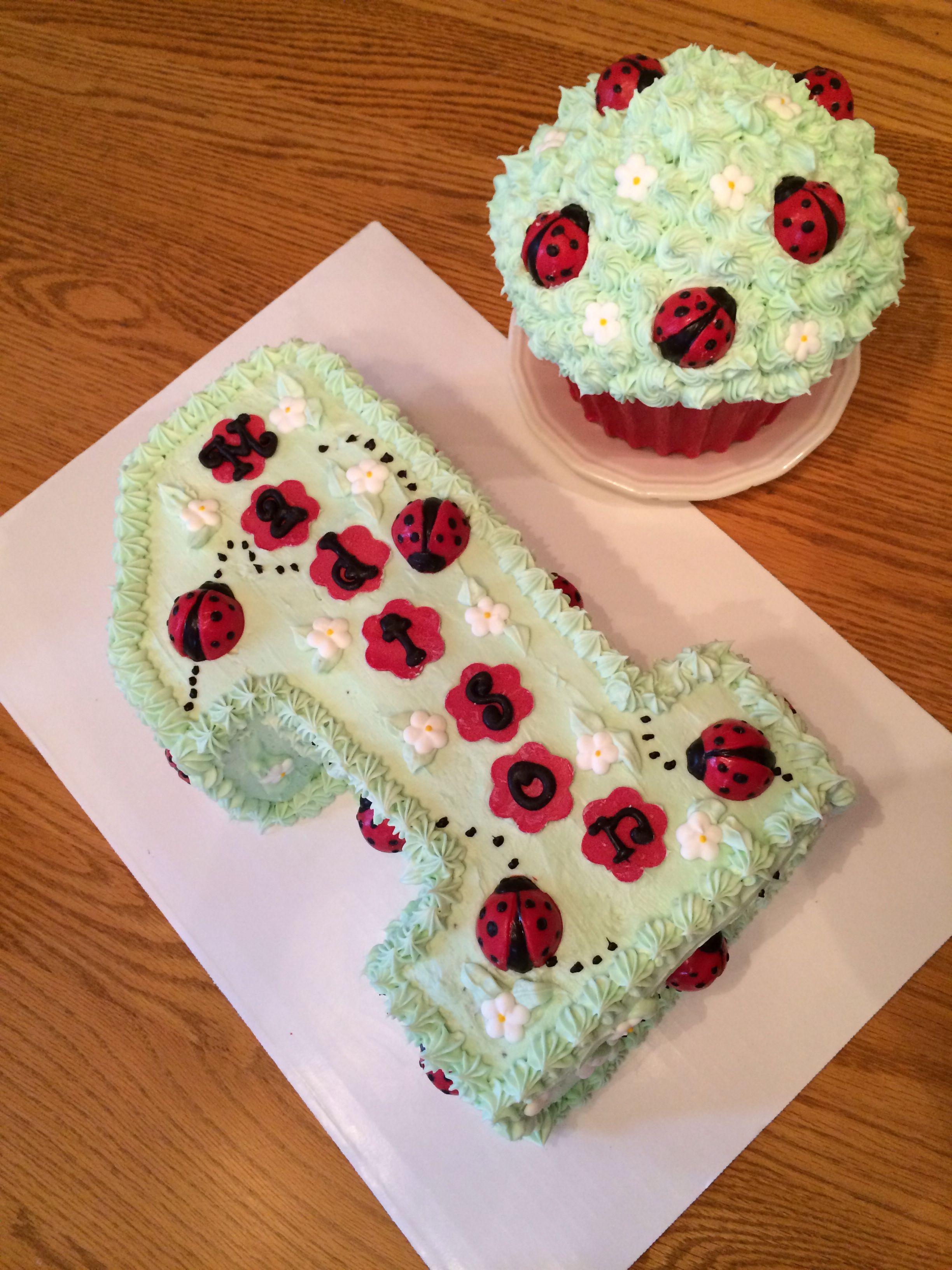 Lady Bug First Birthday Cake Smash Cake Made By Amy Volby